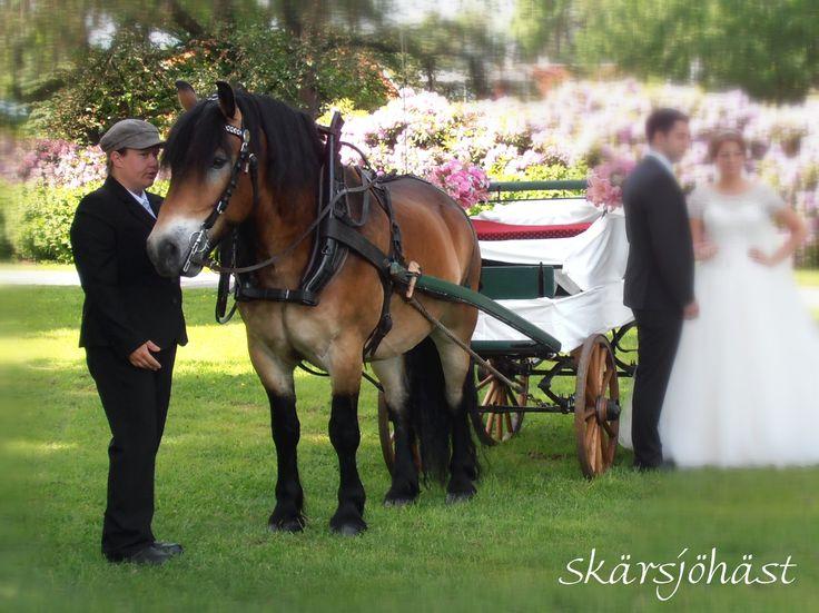 Bröllop i Jönköping