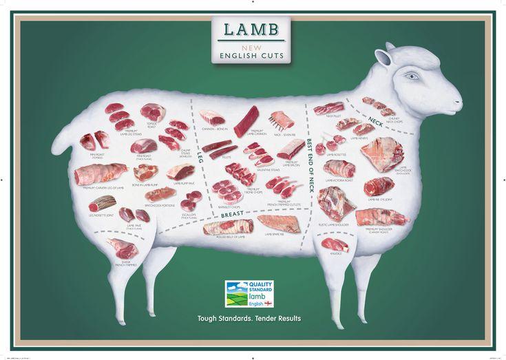 Esquema de cortes nuevos cortes de ovino con Sello de Calidad EBLEX #gastronomía