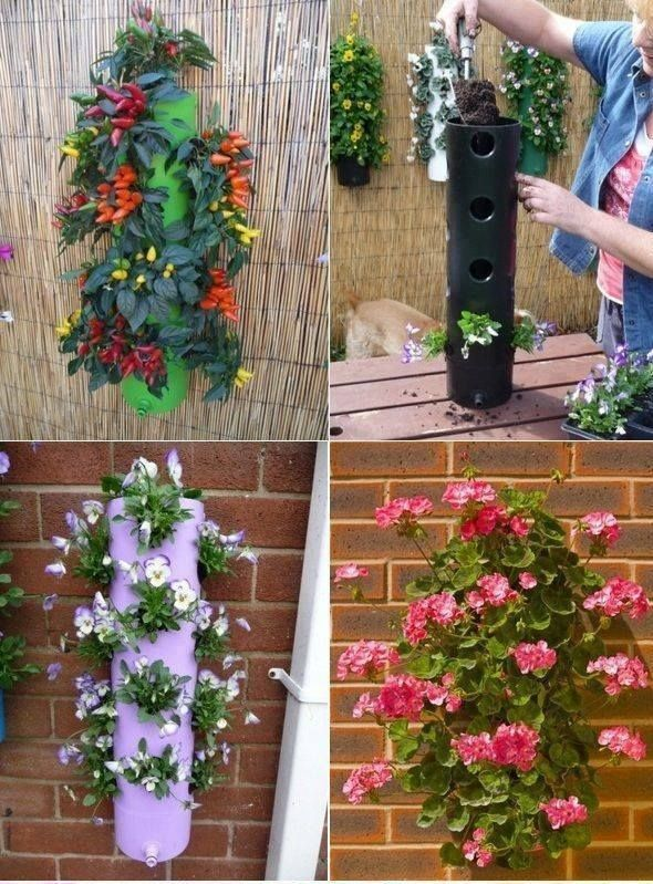 Vertical garden with old PVC pipes