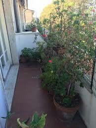 Il balcone: anche se piccolo lo sfruttiamo per metterci tante piante di aromi come il basilico, la menta, la salvia ecc.