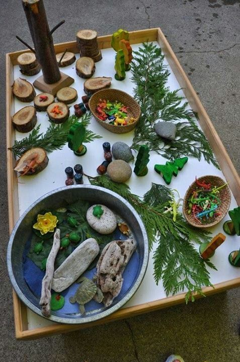 Having loose parts from nature organized onto a light-coloured table. Children can create their own forest or do storytelling. Various ways to explore.