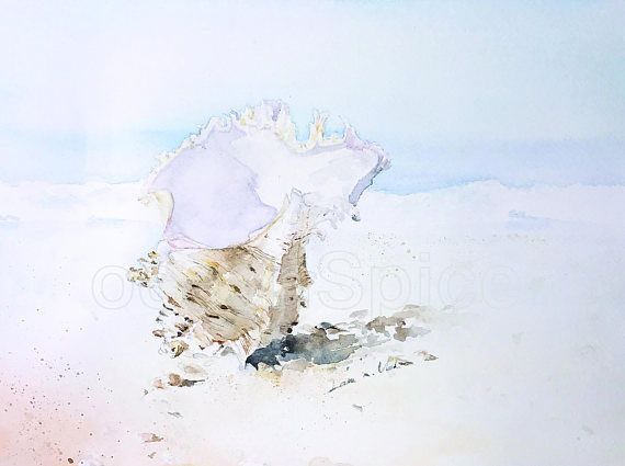 Shipwrecked Murex Shell  ORIGINAL Artwork Watercolor