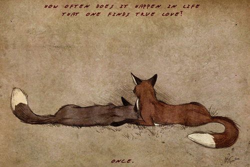 true love fox: Favorite Things, Foxes Animal Tattoo, Amazing Artworks, True Love, Art True, Foxes Art, Culpeo Foxes, Deviantart Interesting, Foxy Things