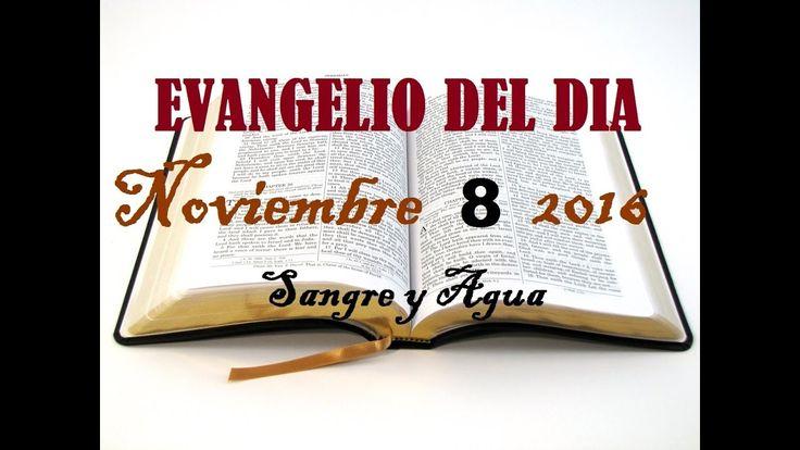 Evangelio del Dia- Martes 8 de Noviembre 2016- Sangre y Agua