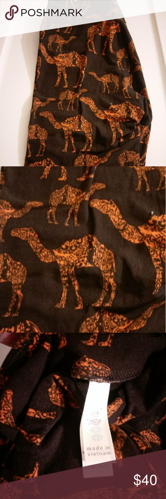 BNWT OS LLR CAMEL LEGGINGS WITH BLACK BACKGROUND! Brand new - never worn or washed. These black OS leggings have orange mosiac camels patterned throughout. A very fun design! I am liquidating my entire collection out of necessity, so I'm VERY motivated to sell! Make me an offer!!! LuLaRoe Pants Leggings