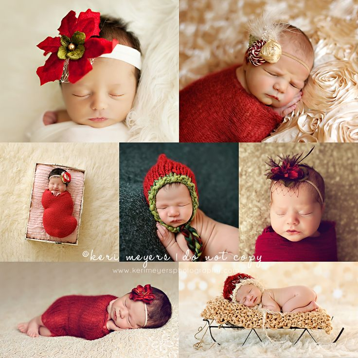 Keri meyers holiday newborns · christmas newborn photographyholiday photographyphotography ideasnewborn