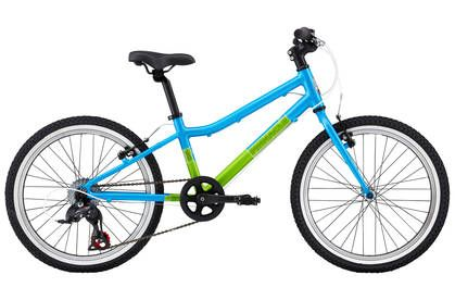 Pinnacle Ash 20 Inch Children's Bike