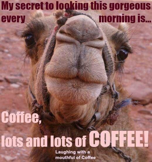 Wednesday coffee.