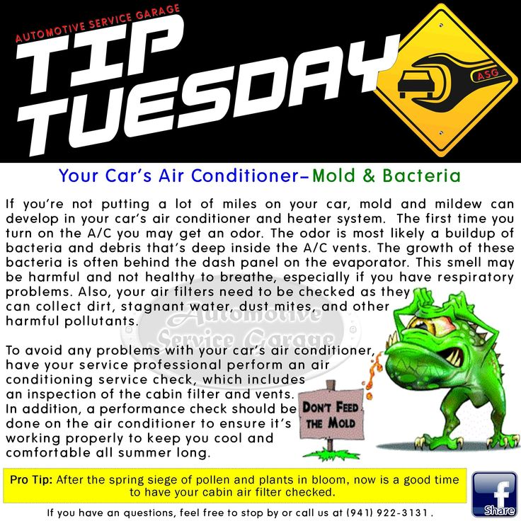 Car Care Tip Mold and mildew can develop in your car's A