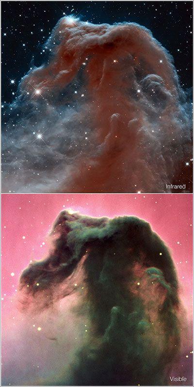 Imagen del 23 aniversario del Hubble. Nebulosa de cabeza de caballo. 2013.