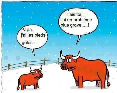 French joke fran ais graphic pinterest blagues for Humour anglais