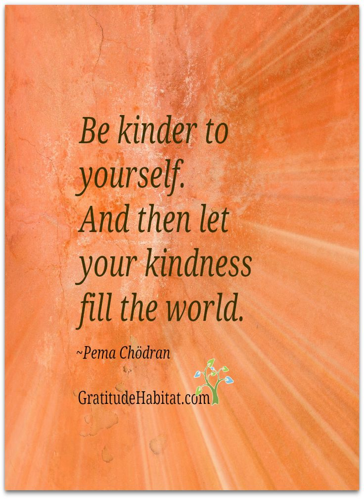 Pema Chodron Quotes Endearing 41 Best Quotes Pema Chödrön Images On Pinterest  Live Life Quote