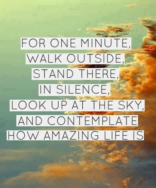 Contemplate this amazing life. #Love #Inspire #Gratitude #Quotes