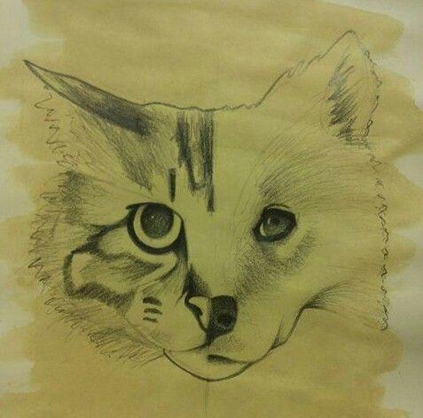 Metà gatto e metà cane a matita di chiara paduano