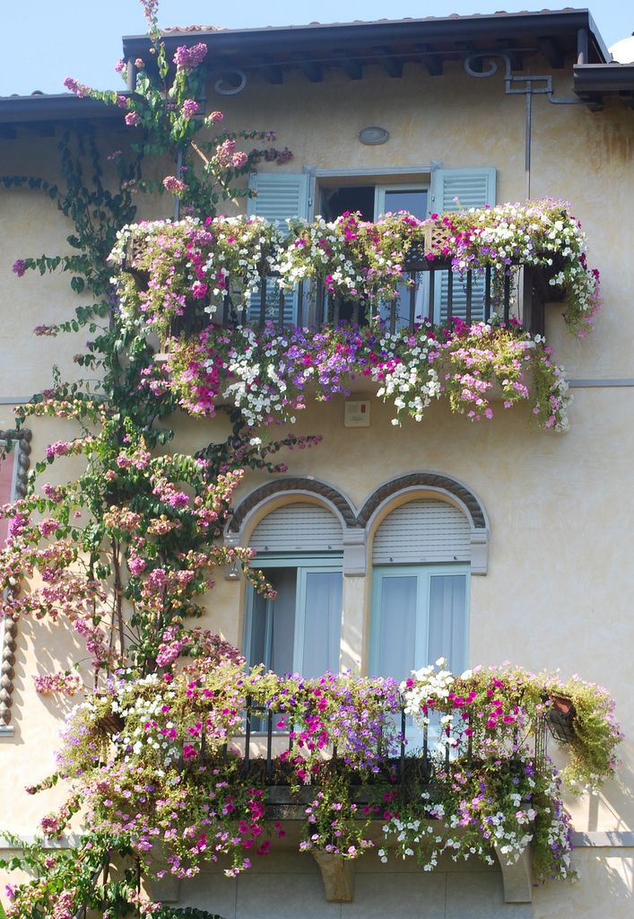 Love the pretty flowers growing from ground up to the first balcony and then up to second balcony and then up on the roof. What a pretty scene this would be!!