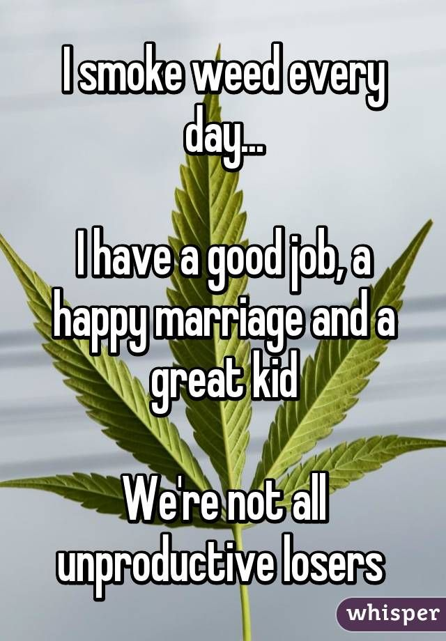 I smoke weed every day...  I have a good job, a happy marriage and a great kid  We're not all unproductive losers
