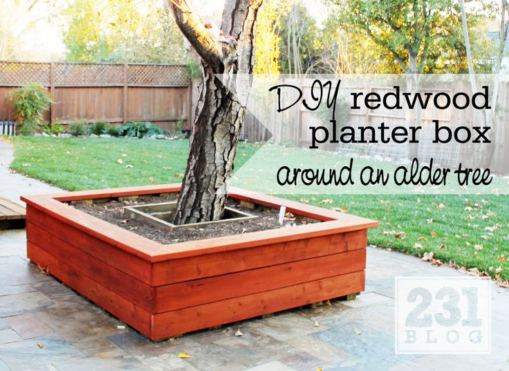 Redwood Planter Box Around A Tree With Seating Diy