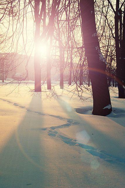 Beautiful winter light