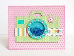 Project Ideas for Queen and Company - Shaker Card Kit - Picture Perfect