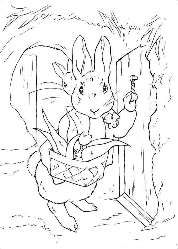 beatrix potter coloring pages google zoeken