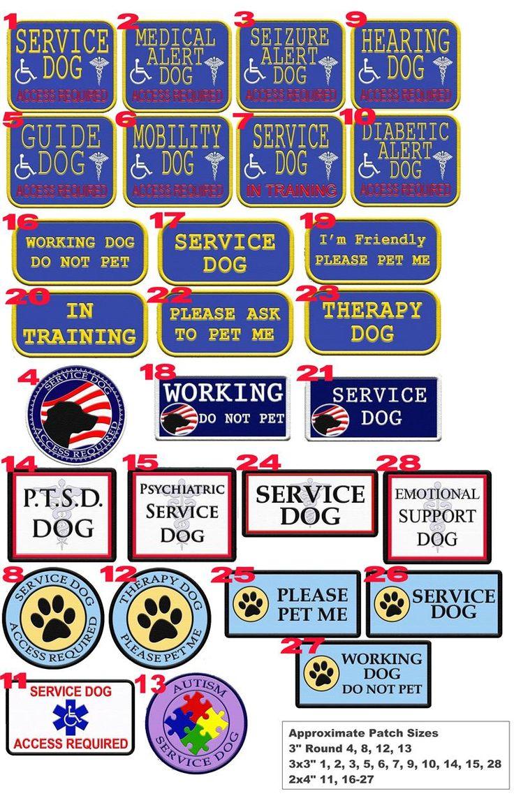 Best 25+ Service dogs ideas on Pinterest | Service dog training ...