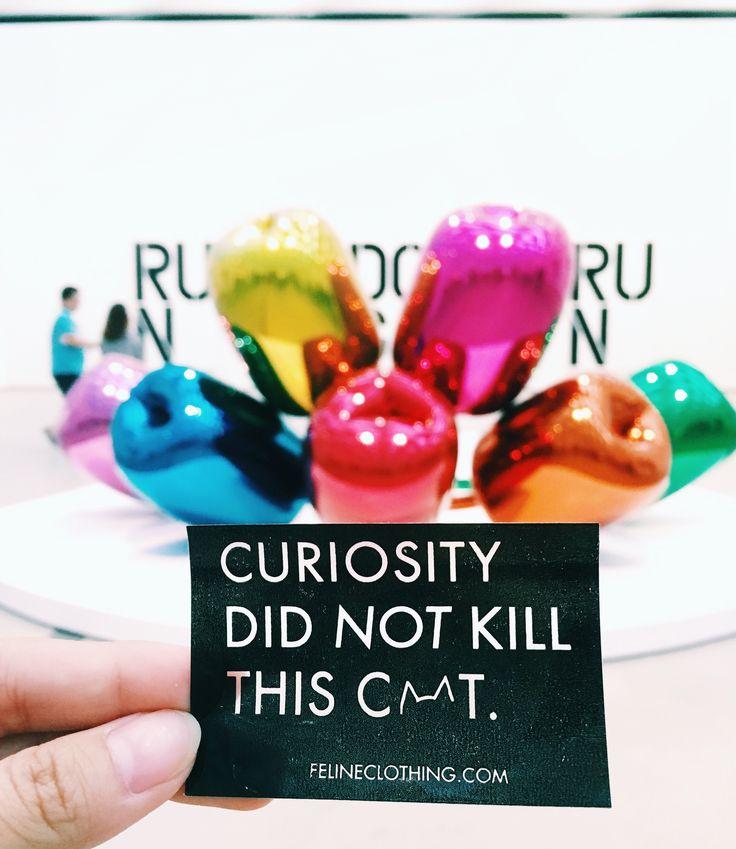 CURIOSITY DID NOT KILL THIS CAT - Feline Co.