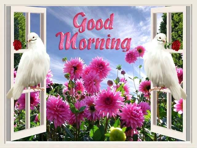 Good Morning Wallpaper : Morning wishes, images and quotes