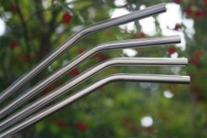 Stainless Steel Straws - perfect length for kids and dishwasher safe!