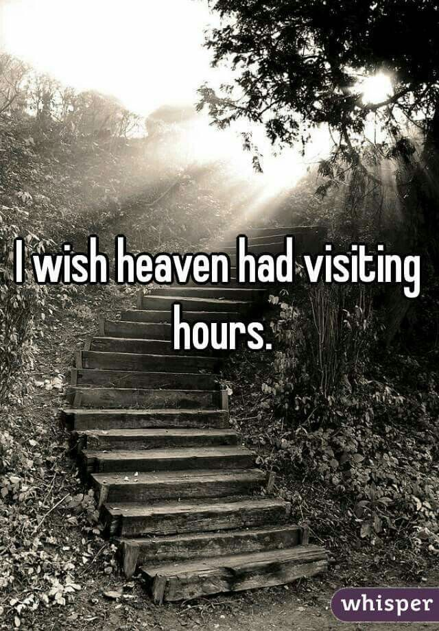If only wishes came true