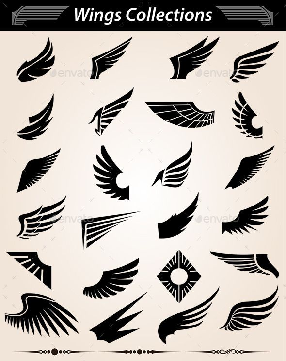 Wings | GraphicRiver
