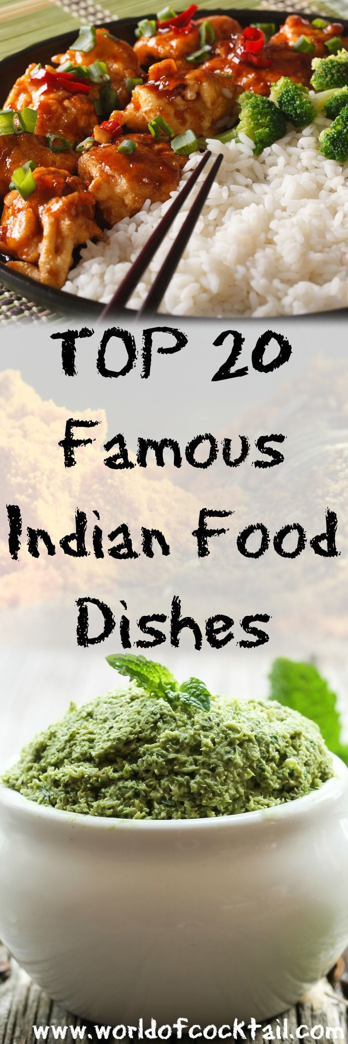 20 Famous Indian Food Dishes