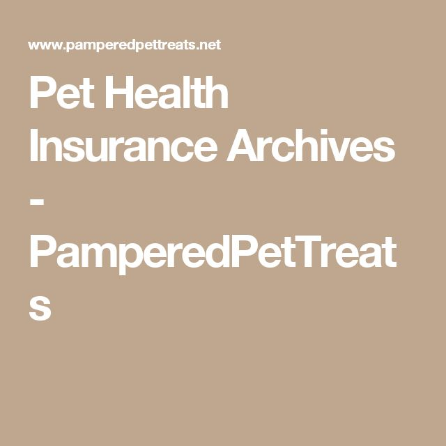 Pet Health Insurance Archives - PamperedPetTreats