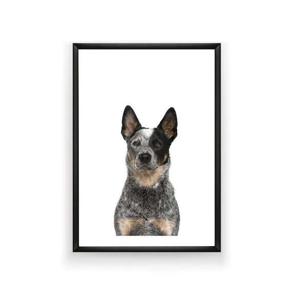 Australian Cattle Dog Print Dog Prints by SingleWavePrints on Etsy