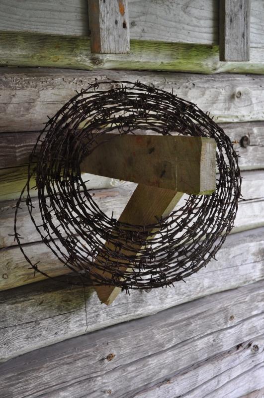 photos :: Barb-wire.jpg image by londonlove - Photobucket