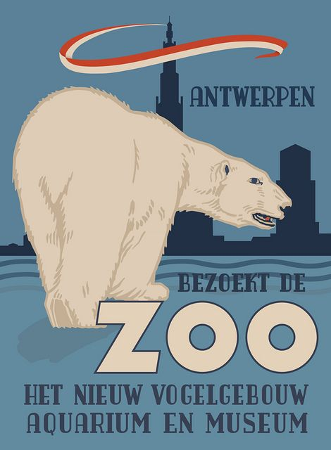 Antwerp Zoo Polar Bear Poster | Flickr - Photo Sharing!