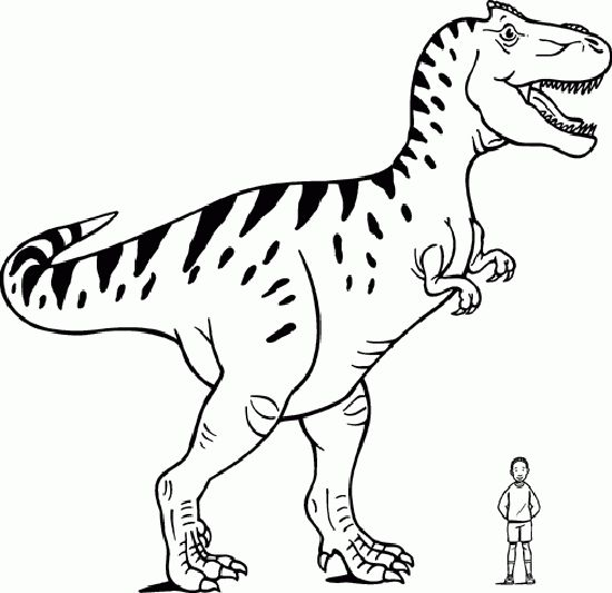 Dinosaurier 18 Ausmalbilder | Auto Hd Wallpapers | Pinterest