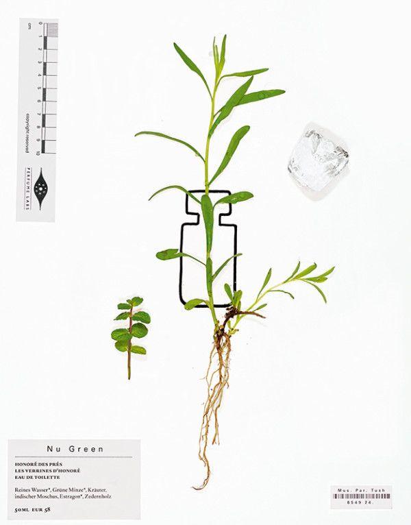 hedi-xandt-tush-magazine-06