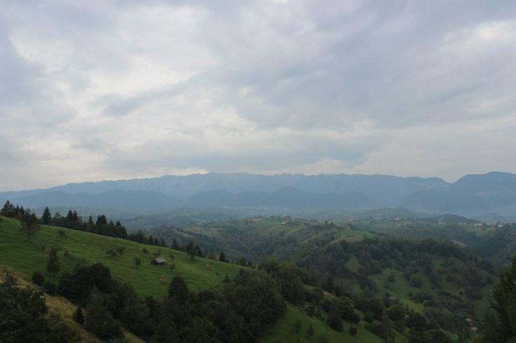 Rucărul-Bran pass, Bucegi mountains, România