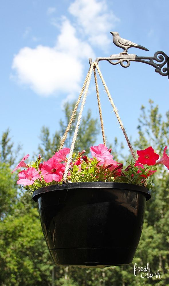 Upgrade Your Plastic Plant Pots With This Simple Sisal Rope Upgrade!