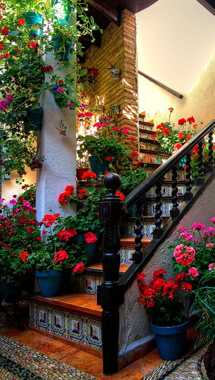 Colorful stairs in Cordoba, Spain • photo: Di Gutti on Flickr