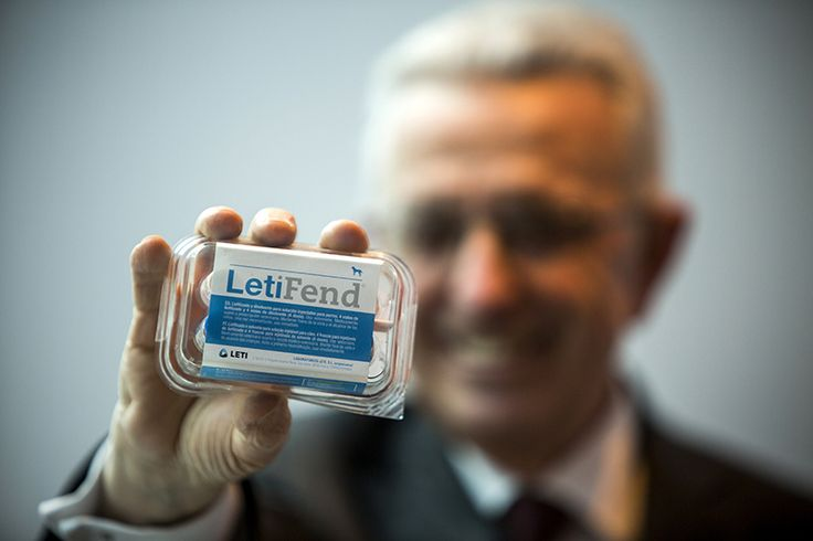 """Chama-se Letifend e é """"a primeira vacina contra a Leishmaniose Canina desenvolvida na Europa a ter por base a avançada tecnologia de ADN recombinante""""."""
