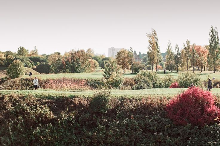 autumn in a Moscow park