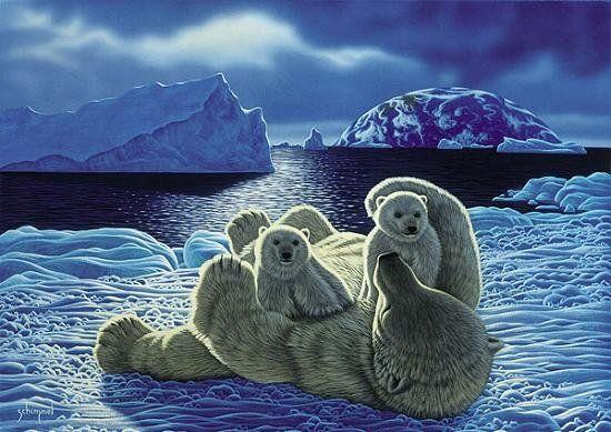 Lední medvědi - 1