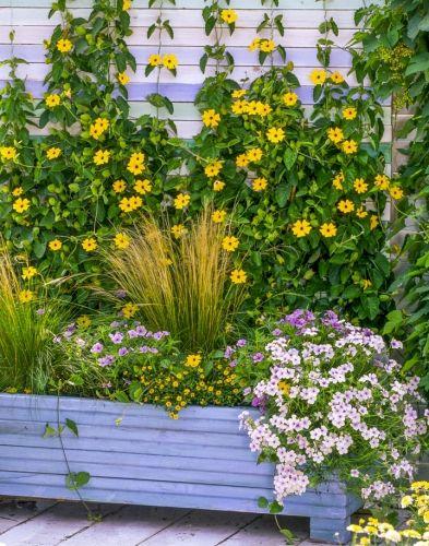 10 jardinières d'été originales