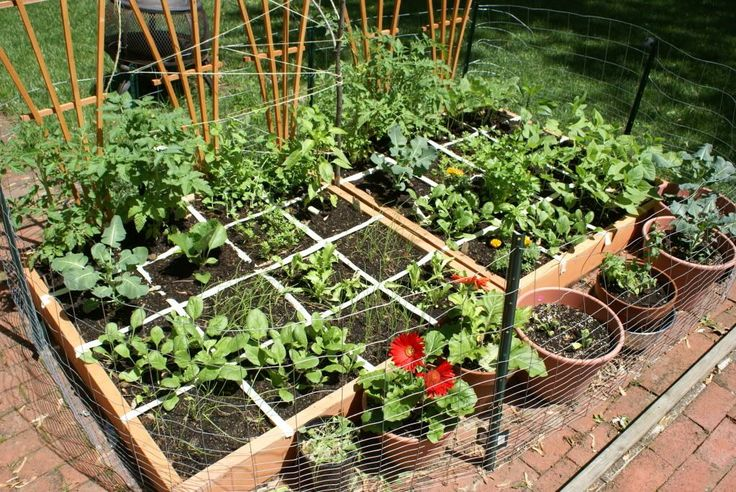 12 Inspiring Square Foot Gardening Plans-Ideas For Plant Spacing ...