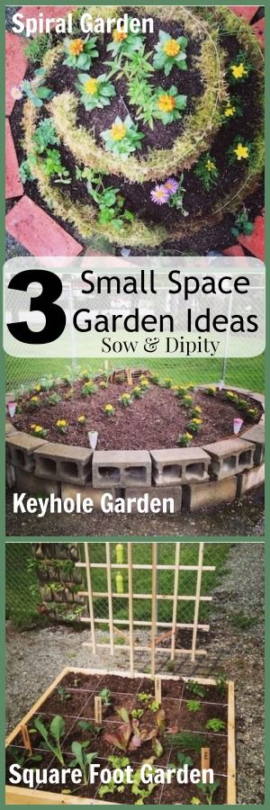 3smallspacegardenideas..three Different Gardens For Small Spaces And  How Tos!