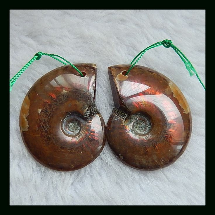 Natural Stone Sale 1Pair commonite fossil Earrings Bead 38*30*6mm,17.5g fashion jewelry accessory