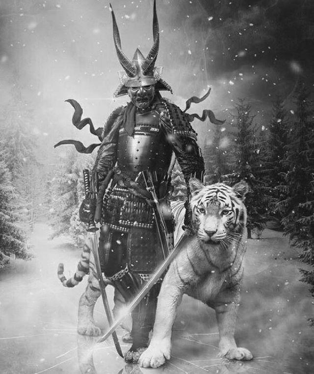Samurai with tiger • • • • • • • • •  #shinobi #assasin #warrior #samurai #manga #ниндзя #katana #art #digitalart #бусидо #japan #bushido #катана #воин #fantasy #blade #Ninja #самурай #Япония #samurai #japan #japanese #japan #japanesestyle #anime  #animeart #fantsay#asian #ronin #ронин