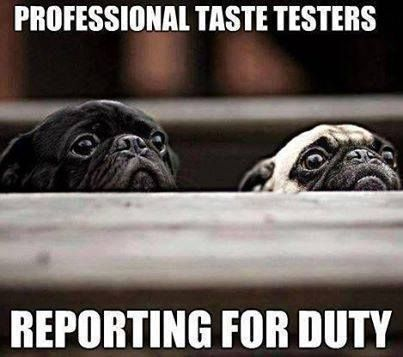Funny Pug Dog Meme Pun LOL ~ re-pinned by pugpersonalchecks.com my puggies quality check all foods