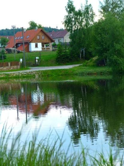 www.udrevare.cz